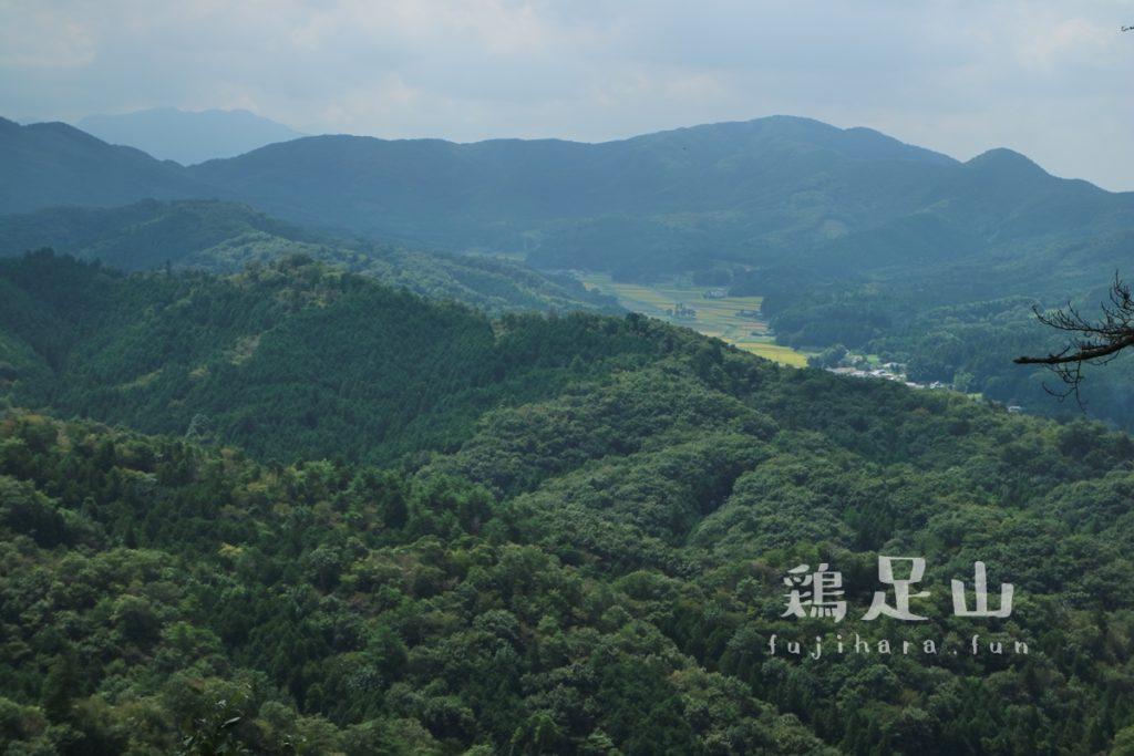 鶏足山の登山道(珪石山コース)