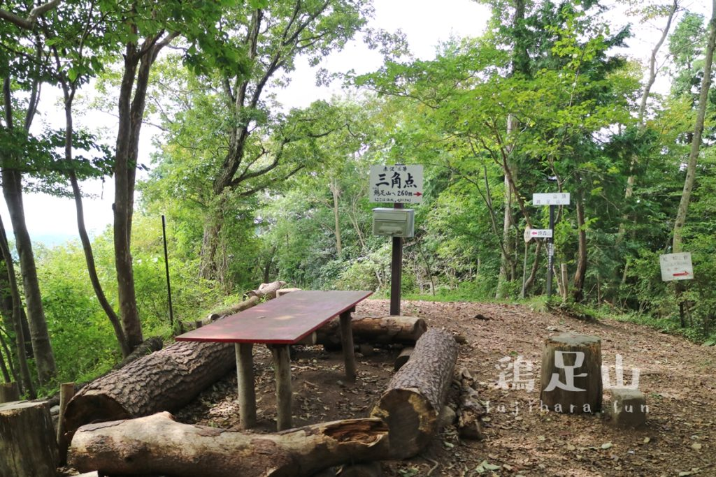鶏足山の登山道