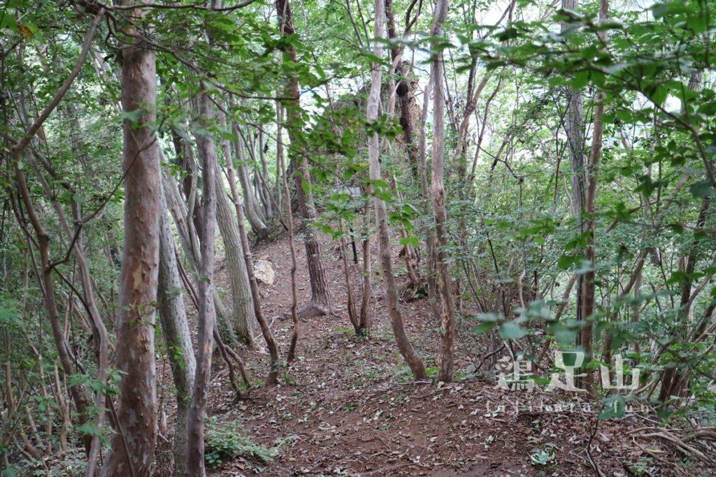 鶏足山の登山道鶏石