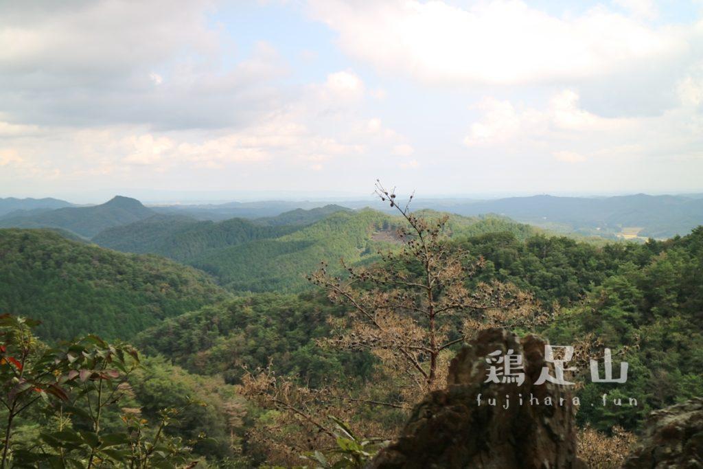 鶏足山の登山道山頂