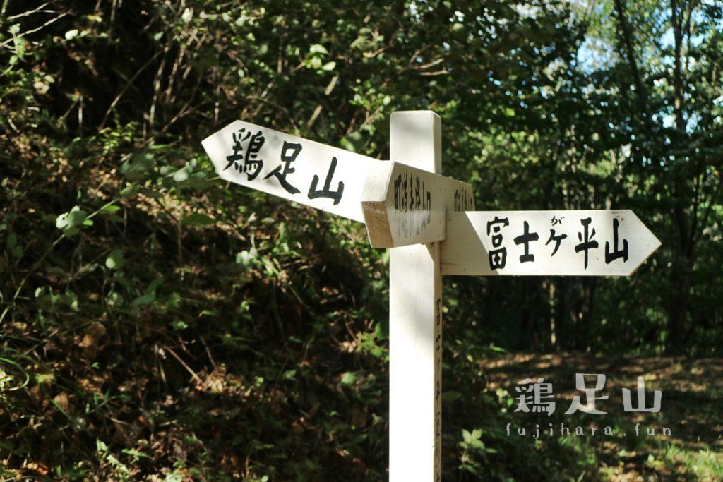 富士が平山コース