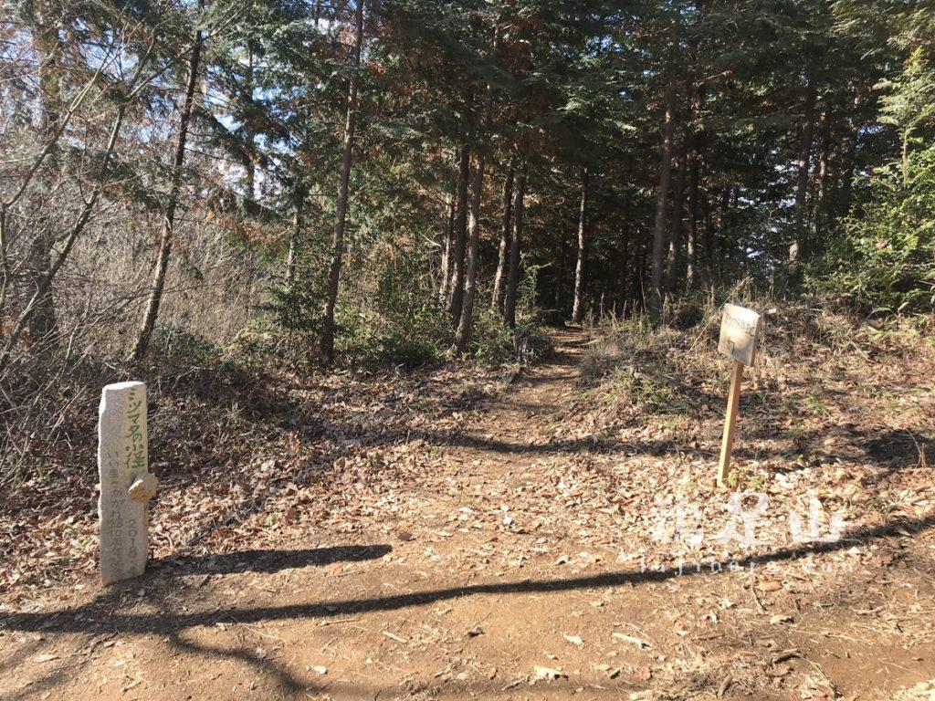 焼森山・鶏足山ハイキングコース